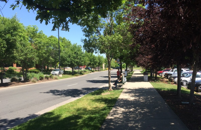 Lakewood, CO proves that a commercial street can be dignified - Photo by Sarah Kobos